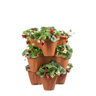 Bama Blumentopf 3 er Set stapelbar Terracotta